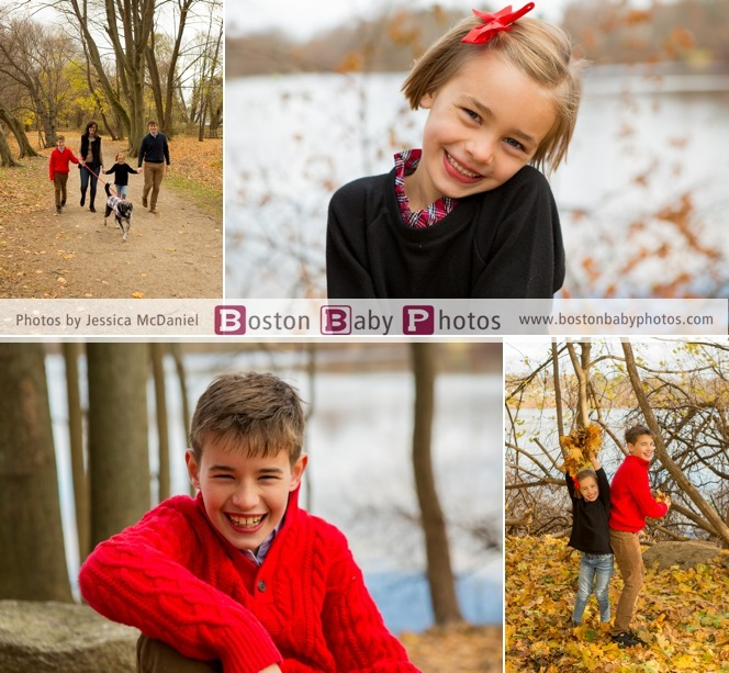 new england fall minishoots