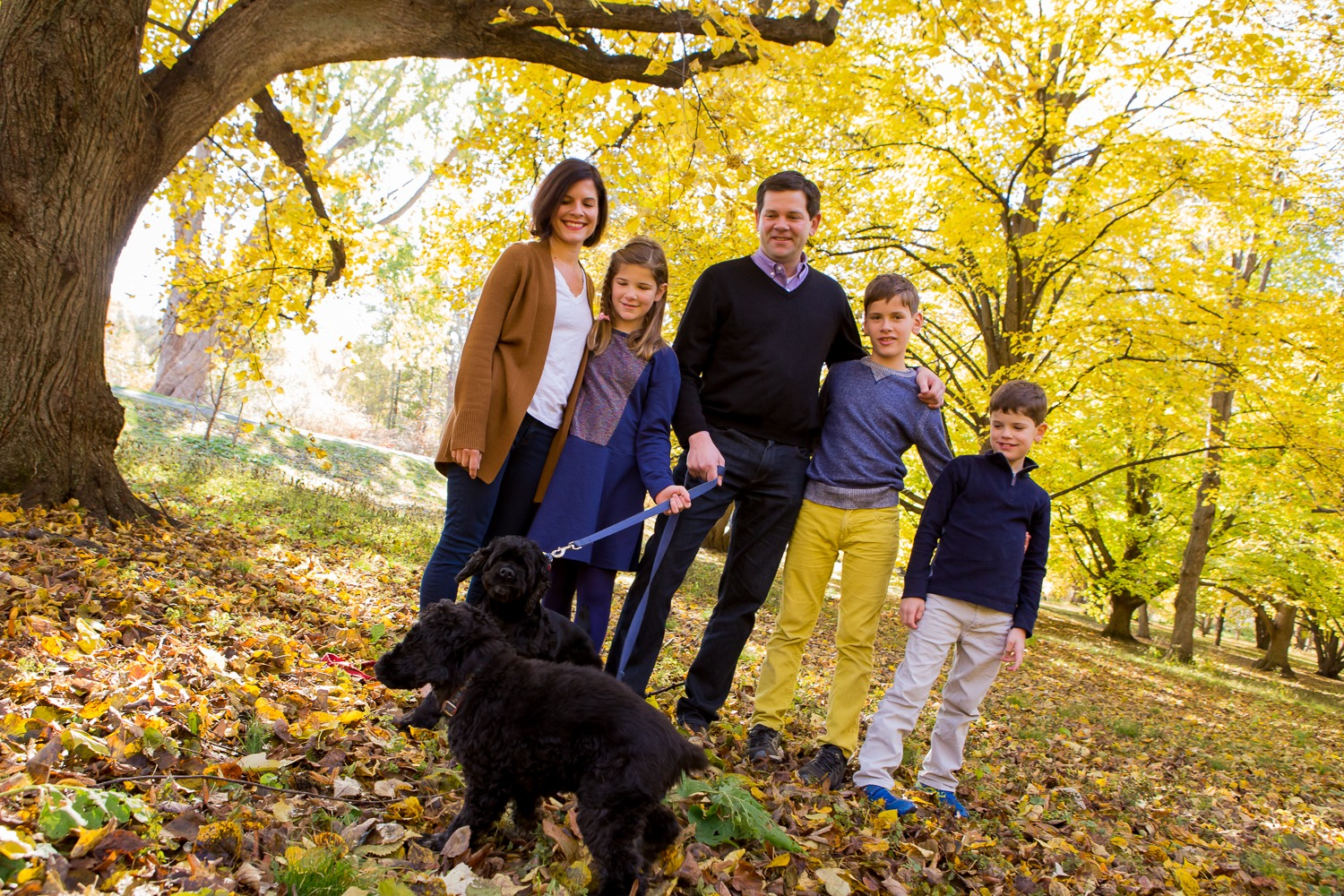 Somerville, MA - On location family photoshoots galore