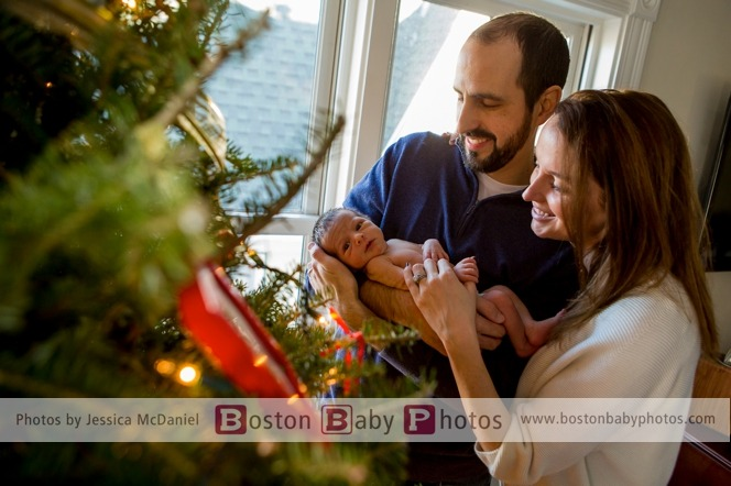 Dorchester, MA: Two week old holiday love