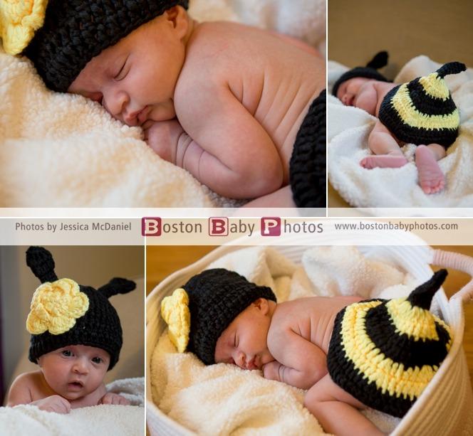 Milton, MA: A tiny little bumblebee new baby photoshoot